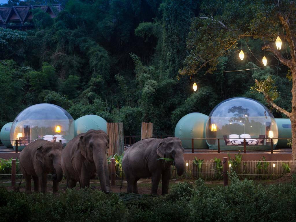 De tendas no deserto a bolhas na selva, como super-ricos aproveitam isolamento de luxo