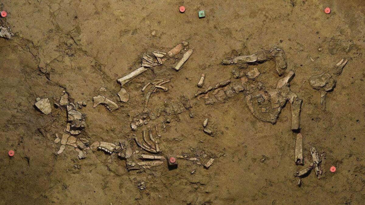 Sepultura da mulher que morreu com 20 anos. Crédito: Universidade de Tübingen, Instituto de Pré-história e Arqueologia Medieval