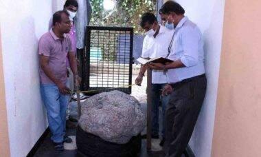 Maior safira estrela do mundo é encontrada no Sri Lanka. Foto: Divulgação/Mr Gamage