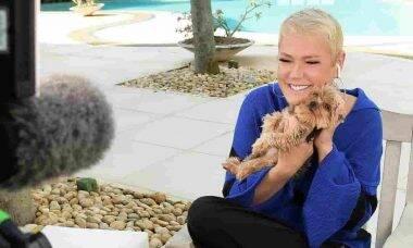 Xuxa vende sua famosa mansão na Barra da Tijuca. Foto: Reprodução/Instagram