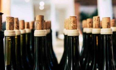 Aniversariantes centenários ganham 100 garrafas de vinho de presente na Suíça. Foto: Grape Things