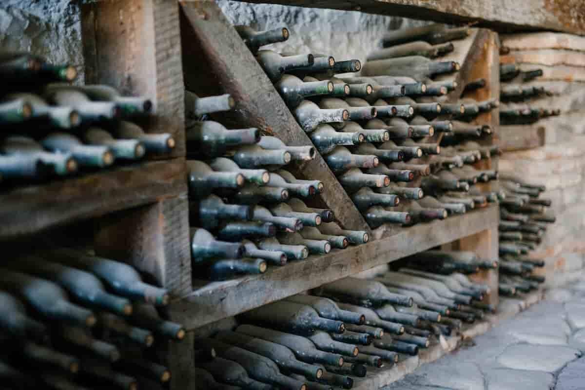 Vinho é o melhor investimento de luxo, segundo novo índice. Foto: Julia Volk